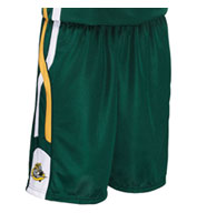 Custom Adult Helix 11 Inch Basketball Short Mens